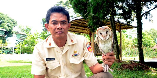 Penyelamat Lingkungan Dengan Budidaya Burung Hantu