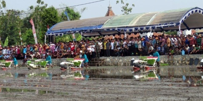 Rice Transplanter Permudah Tanam Padi