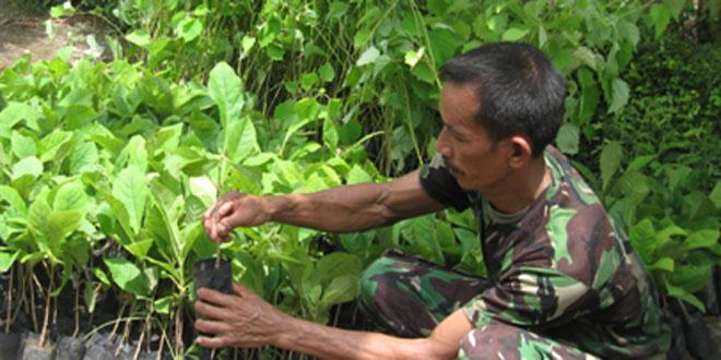 Kodim 0709 Hijaukan Kebumen