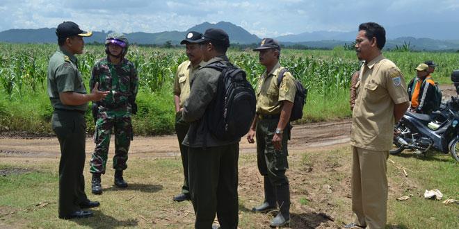 Kasdim 0712/Tegal Tinjau Lokasi Penanaman Jagung