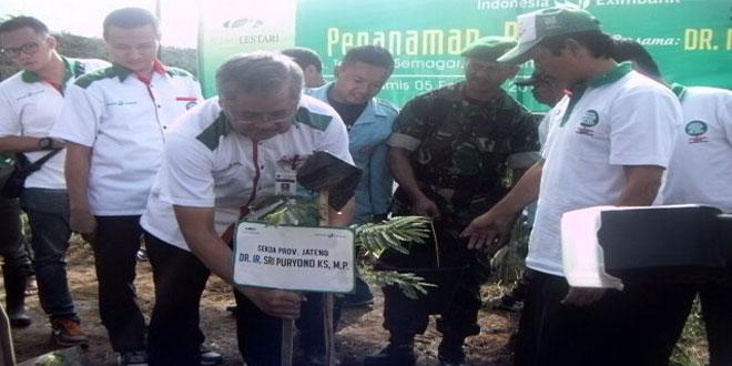 Sekda Jateng Sri Puryono Menanam Bibit Pohon Sengon