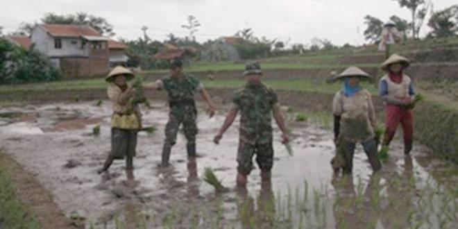 Kegiatan Ketahanan Kecamatan Sirampog oleh Anggota Koramil 10/Sirampog