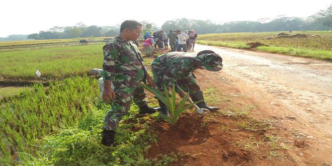 TNI, Muspika dan Warga Tanam Pohon Kelapa