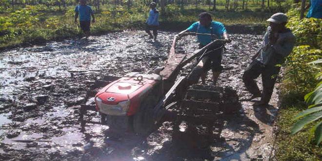 Babinsa Koramil 03/Banjarejo Pendampingan Pengolahan Lahan Padi