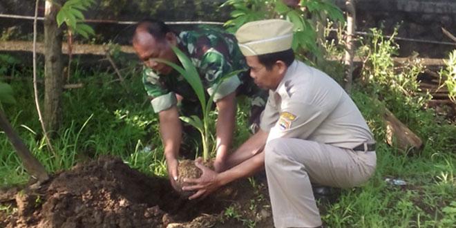 Babinsa Koramil-08/Sambirejo Partisipasi dalam Gerakan Tanam Pohon Kelapa di Desa Sambi