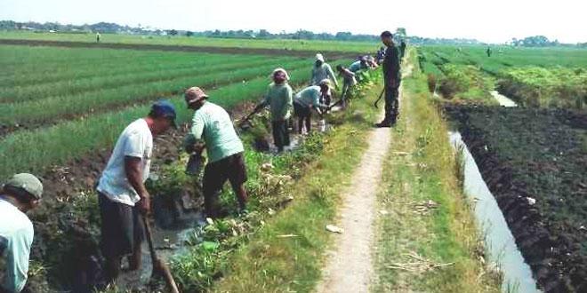 Program Padat Karya Desa Kedungtukang Jatibarang Brebes