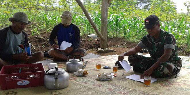 Penyuluhan dan Penelitian terhadap Tanaman Padi dengan Metodha Sri dan Jajar Legowo
