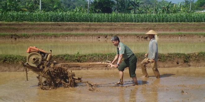TNI, BP3K, Mahasiswa UGM  dan Warga Menyiapkan Lahan Tanam