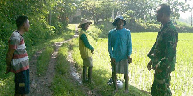 Babinsa Koramil-10/Tangen Komsos dengan Petani  Desa Galeh