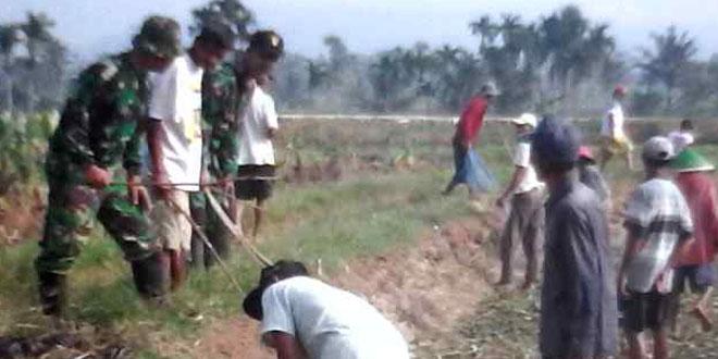 Koramil 24/Kedungbanteng Bersama Petani Basmi Tikus