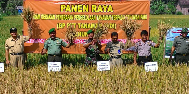 Jajaran Koramil 09/Prambanan Panen Raya GP PTT Tanaman Padi