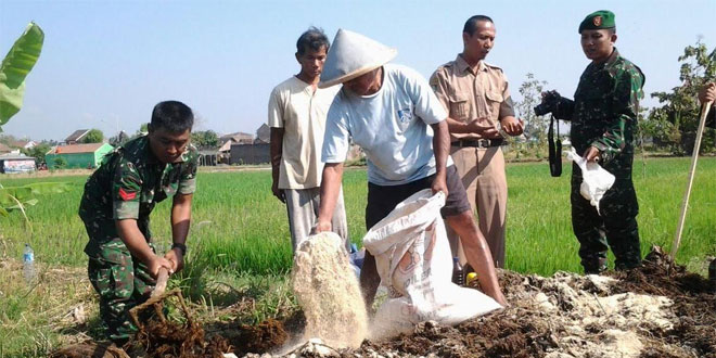 Sosialisasi Cara Pembuatan Pupuk Kandang Secara Efektif dan Efisien Kepada Petani