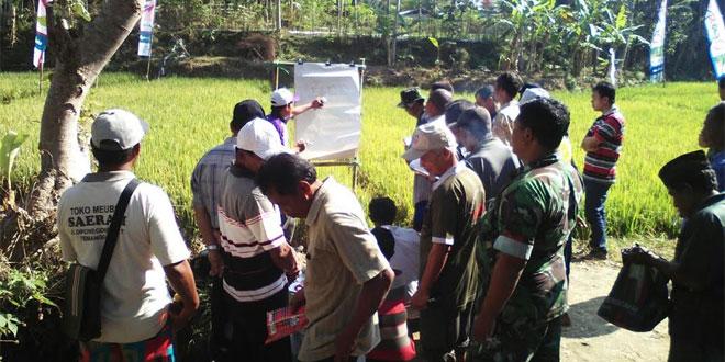 Babinsa Danurejo Dampingi Sekolah Lapang Pengendalian Hama Penyakit Tanaman Padi