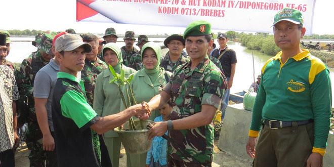 Kodim 0713/Brebes Tanam Pohon Bakau di Bantaran Sungai dan Pesisir Pantai Prapag Kidul Losari
