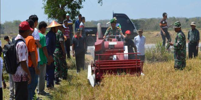 Pelatihan Mesin Perontok Padi Otomatis di Temon