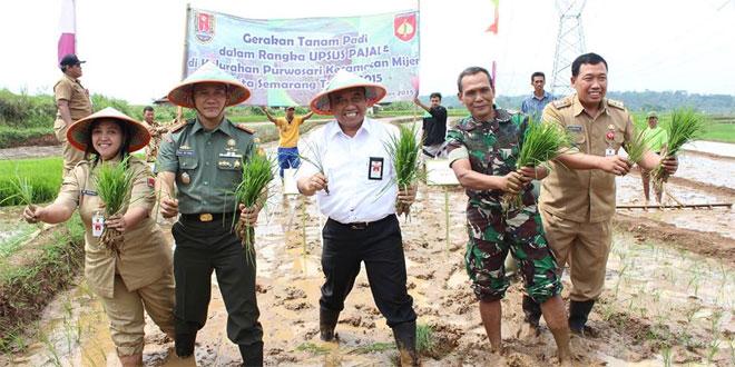 Dandim 0733-Bs/Semarang Laksanakan Tanam Padi Serentak di Desa Bentur