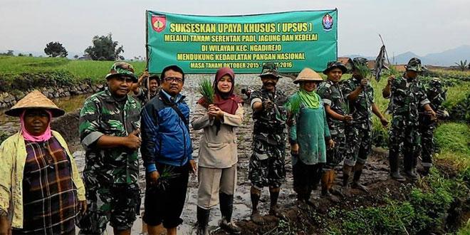 Koramil 04/Ngadirejo Melaksnakan Tanam Serentak Padi, Jagung dan Kedelai di kecamatan Ngadirejo