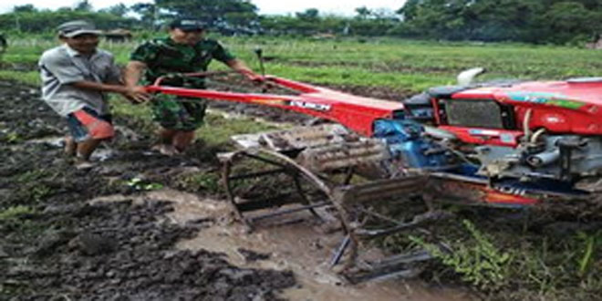 Babinsa Koramil 06/Jumo Membantu Petani Menyiapkan Lahan Tanam Padi