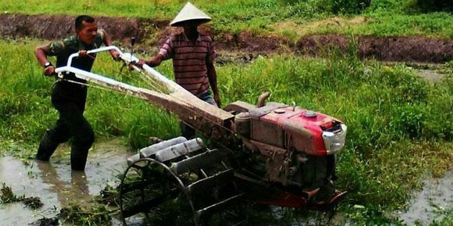 Babinsa Bandongan Operasionalkan Hand Tractor