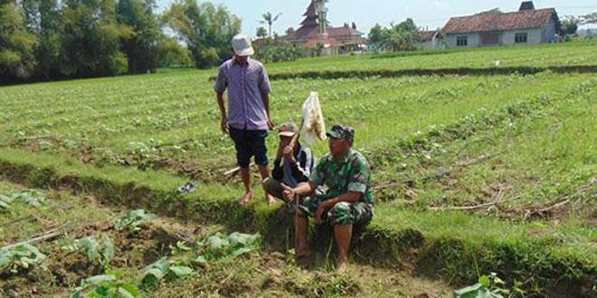 Optimalkan Peran 3 Pilar Sampai Ke Desa melalui Kegiatan Komsos