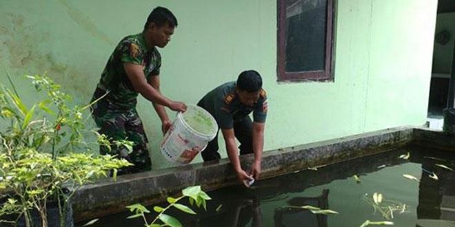 Komandan Koramil 07/Ngemplak Menabur Benih Ikan Gurami Dikolam Koramil