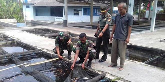 Anggota Koramil 12/Mlati Kunjungi Kelompok Budidaya Ikan Mina Kepis di Wilayah