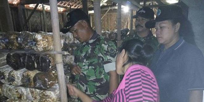 Anggota Koramil 01/Cangkringan Kunjungi Tempat Budidaya Jamur Tiram