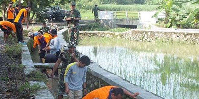 Pentingnya Peningkatan Pasokan Beras di Wilayah, Kodim Rembang Canangkan LTT di Kecamatan Sale dan Pamotan