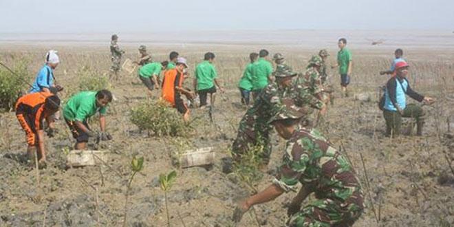 TNI dan Masyarakat Tanam Ribuan Mangrove