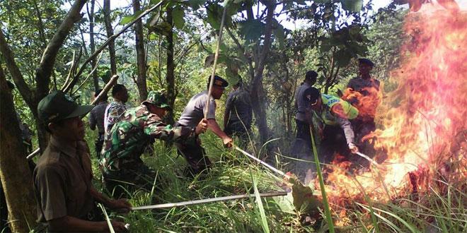 Koramil 05 Kutoarjo Bersama Polri dan BPBD Purworejo Latihan Padamkan Kebakaran Hutan