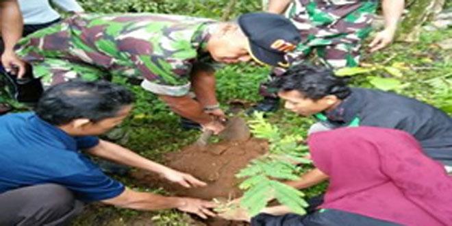 Koramil 05/Candiroto Tanam Pohon di Makam Bersama KKN Unnes