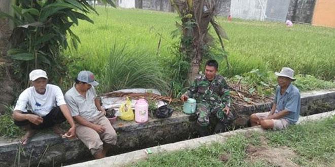 Pendampingan Upsus Babinsa Maguwoharjo Koramil 11/Depok Mengecek Kesiapan Tanam