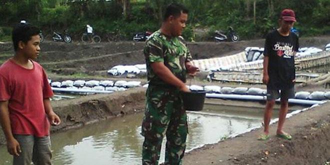 Manfaatkan Waktu Luang Sertu Slamet Widodo Budidaya Ikan