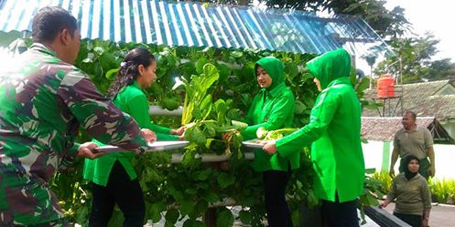 Kodim 0732/Sleman Panen Sayuran Hidroponik