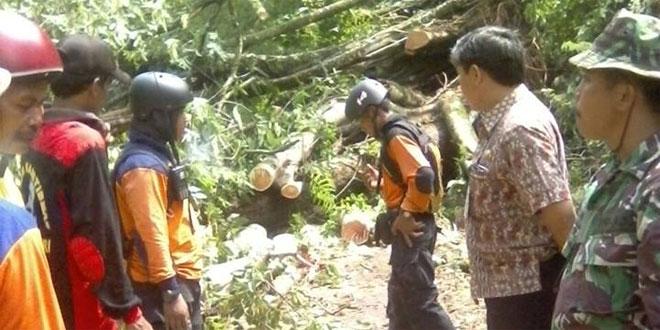 Anggota Koramil Tirtomoyo Singkirkan Pohon Tumbang