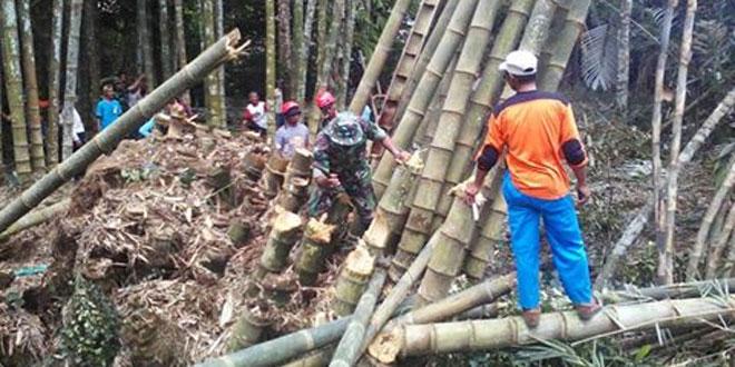Babinsa Koramil 14/Minggir Bantu Masyarakat Atasi Bencana Alam Puting Beliung di Wilayah Seyegan