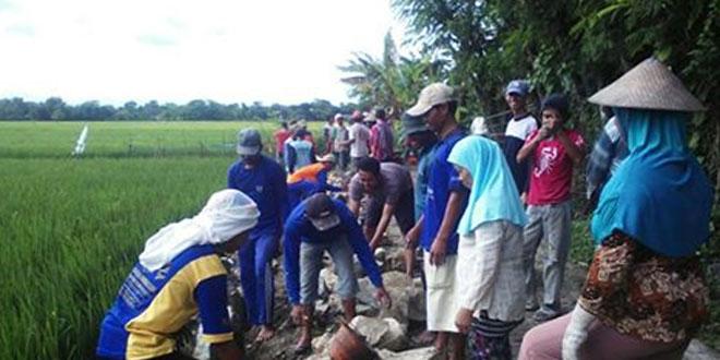 Babinsa Desa Kliwonan Kerja Bakti Pembuatan Talud 350 Meter