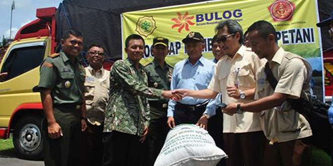 Panen Raya Bersama Danrem 072/Pmk dan Bupati Sleman di Wilayah Moyudan
