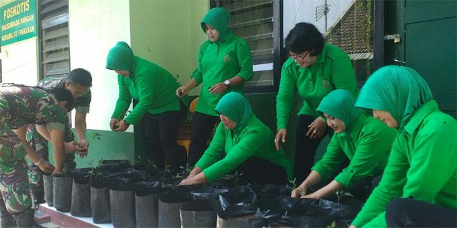 Ketua Persit Ranting 4 Koramil 03/Parakan Tanam Cabai
