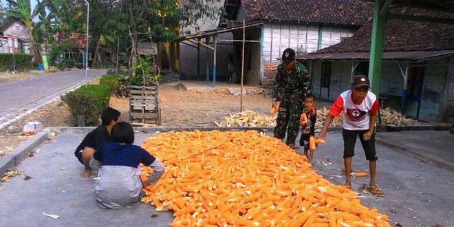 Babinsa  Koramil 03/Banjarejo Bantu Warga Binaan