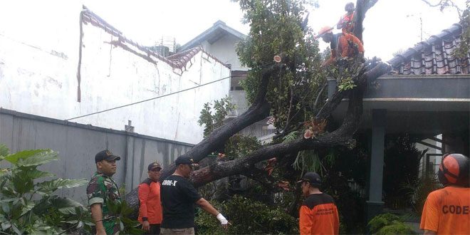 Babinsa Koramil 06/Mergangsan Membantu Warga Membersihkan Pohon Tumbang
