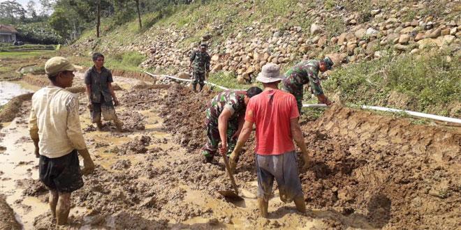 Peran Babinsa Di Wilayah Sukseskan Swasembada Pangan