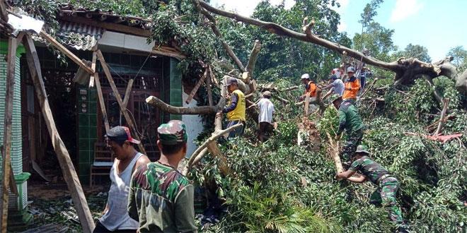 Bersama Warga, Koramil 16/Tulung Perbaiki Rumah Tertimpa Pohon