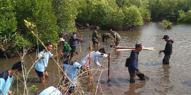 Peduli Lingkungan Hidup, Danramil 10/Karimunjawa Ajak Lapisan Masyarakat Tanam Pohon Bakau