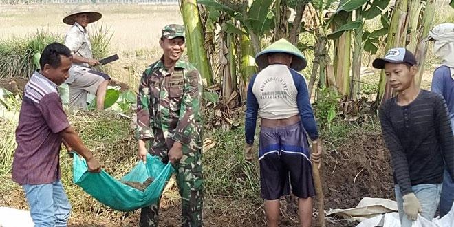 Akses ke Sawah Sulit Babinsa Bersama Warga Bangun Jalan Usaha Tani