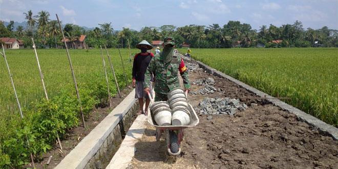 Permudah Akses Petani, Babinsa dan Pemdes Mangli Perbaiki Jalan Usaha Tani