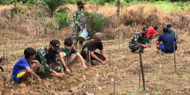 Tingkatkan Produksi Pertanian, Satgas Yonif 407/PK Membantu Masyarakat Menanam Cabai