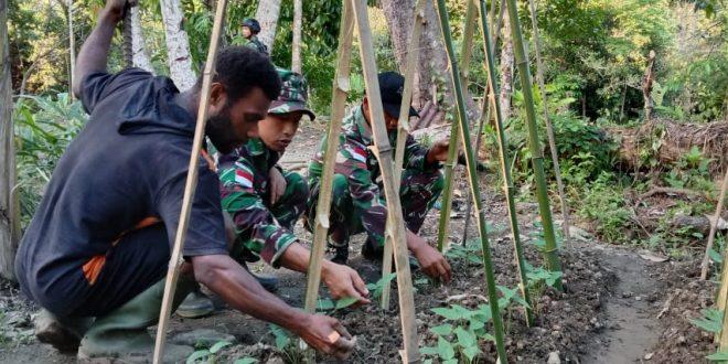 Cara Strategis, Satgas Pamtas Yonif 403/WP Ajak Masyarakat Tingkatkan Perekonomian dan Siasati Keterbatasan Pangan di Wilayah Perbatasan RI-PNG