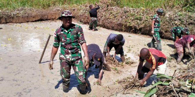 Pembudidayaan Ikan, Satgas Pamtas Yonif 403/WP Bersama Masyarakat Gotong Royong Siapkan Kolam Ikan di Wilayah Perbatasan RI-PNG